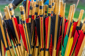 Colorful shafts of wooden arrows with real bird feathers for shooting with a bow