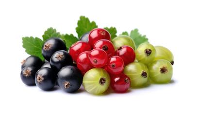 Raspberry, currant and gooseberry.