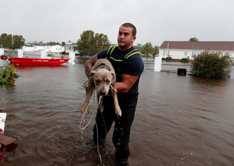 U.S. Coast Guard Petty Officer David Kelly carries a dog to safety during Tropical Storm Florence in Lumberton