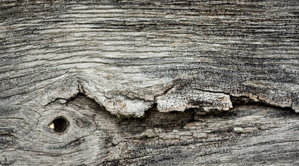 Aged wooden fence post