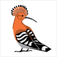 Hoopoe bird. Vector color isolated stylized image.