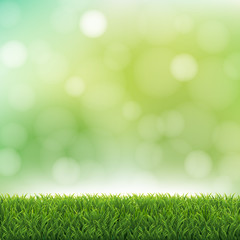 Nature Green Background With Bokeh And Grass