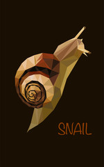 Colorful polygonal style design of forest snail in brown colors on a black background