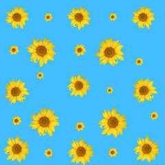 print. sunflower isolated pattern on blue background