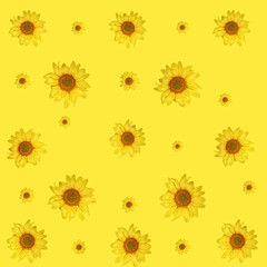 sunflower isolated pattern on yellow background