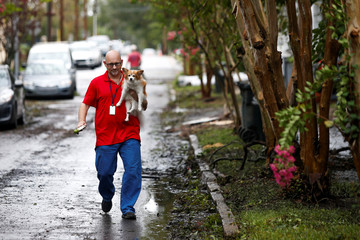 Man walks along the street with his dog as people return to their houses after the passing of Hurricane Florence in New Bern, North Carolina
