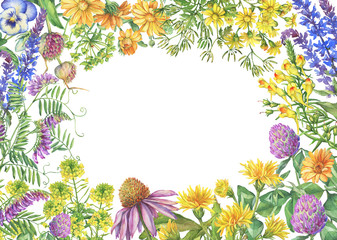 Floral square frame with flowering wildflowers, medicinal herbs. Watercolor hand drawn painting illustration isolated on a white background.