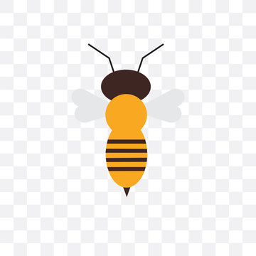 bee icon isolated on transparent background. Simple and editable bee icons. Modern icon vector illustration.