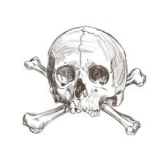 Hand drawing skull and bones.