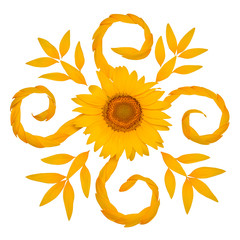 Creative idea flower of a sunflower and petals flying in the wind. Abstraction and wave. Floral pattern. Agricultural topics. Place for text. Flat lay, top view