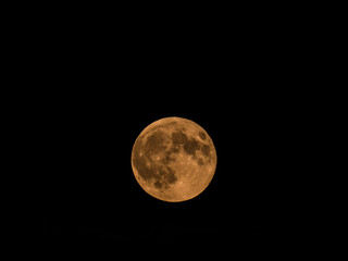 Beautiful close up photograph of a full micro moon with a yellow hue in a dark black night sky.
