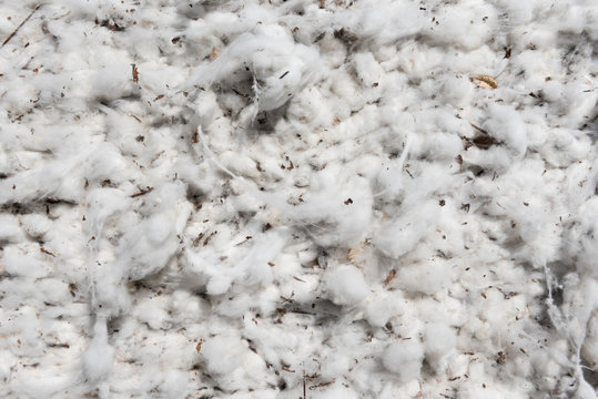 Closeup of a bale of harvested cotton in Queensland, Australia.