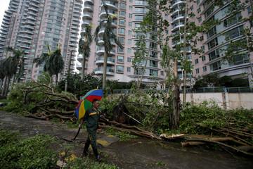 Man walks past fallen trees after Typhoon Mangkhut hit Shenzhen