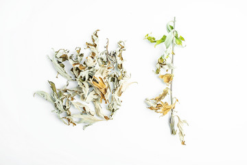 Chinese herbal medicine dried sun leaves