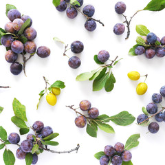 Fototapete - Food background. Composition of yellow and blue plums on branches with leaves top view, flat lay. Fresh fruit pattern.