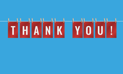 Thank you letters pinned to string with pegs. Vector Illustration.