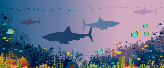 Underwater panorama - sharks, fishes, coral reef and sea.