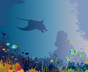 Manta, fishes, coral reef and underwater sea.