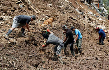 A dog of a missing miner watches rescuers dig for people buried in a landslide, after super typhoon Mangkhut hit the country, at a mining camp in Itogon