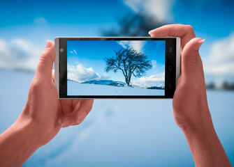 The tree on a snowy hill on screen of smartphone