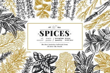 Culinary herbs and spices banner template. Vector background for design menu, packaging, recipes, label, farm market products. Hand drawn vintage botanical illustration.
