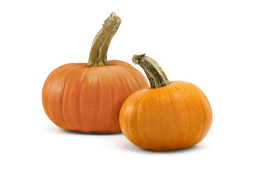 Aluminium Prints Equestrian Two pumpkins isolated on white background