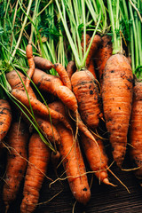 Fresh carrots close-up on a wooden background