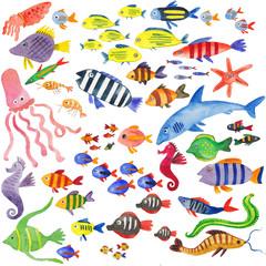 набор рыб и морских жителей, акварельная иллюстрация с подводным миром