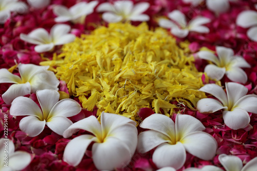 flower urlie with frangipani champa and rose petals stock photo