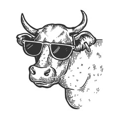 Cow animal in sunglasses engraving vector illustration. Scratch board style imitation. Black and white hand drawn image.