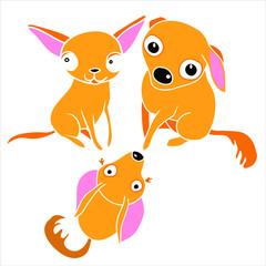 Vector illustration for design, home pet