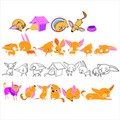 Set of illustrations, in vector, home pet, for design