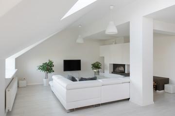 White living room with modern decor