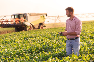Young farmer in filed holding tablet in his hands and examining soybean corp. Wall mural