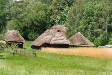 stare chałupy obok pola z dojrzałym zbożem  i gęsty las