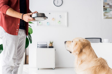 cropped view of golden retriever dog looking at man with dog bowl