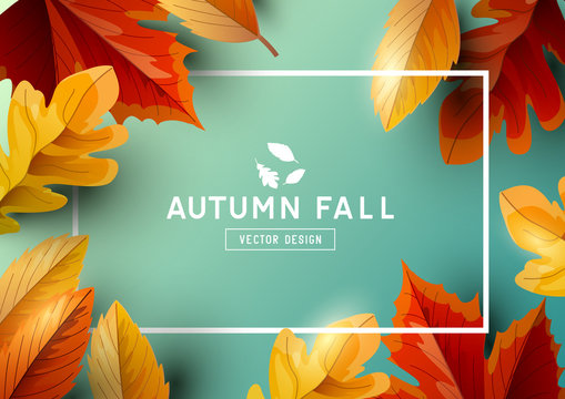 Autumn Seasonal Frame Background Top View