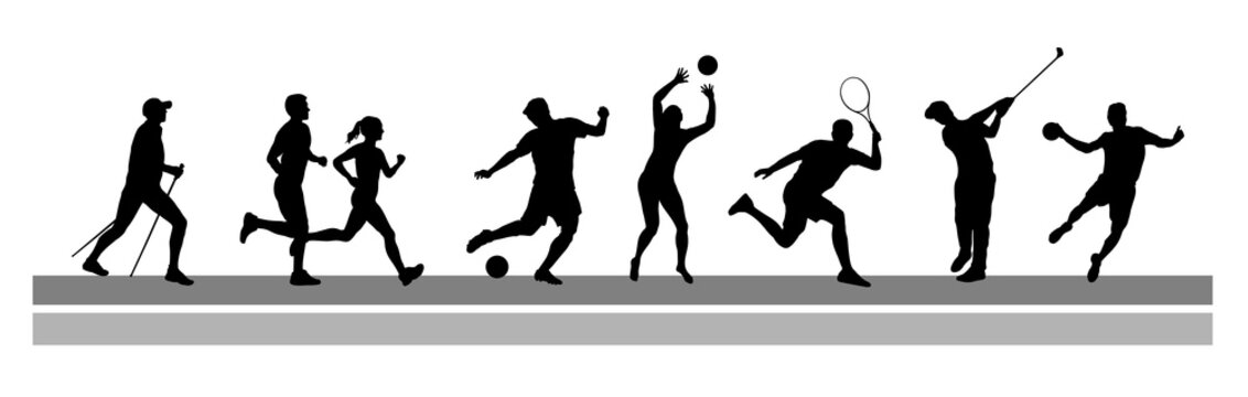 Sport - 13