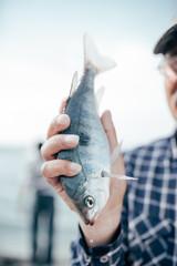 fish showed by a crop man