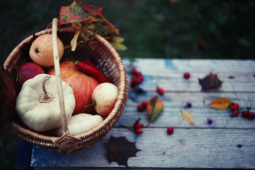 Autumn harvest/ settings table/thanksgiving day background