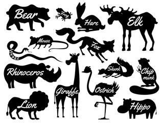 Animals for baby. Silhouettes isolated. Wild giraffe moose camel and deer, rhinoceros. hare, wolf and bear with lion and tiger. vintage world. Cartoon vector.