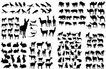silhouette of an animal, large set