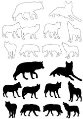 vector isolated silhouette wolf on white background, set