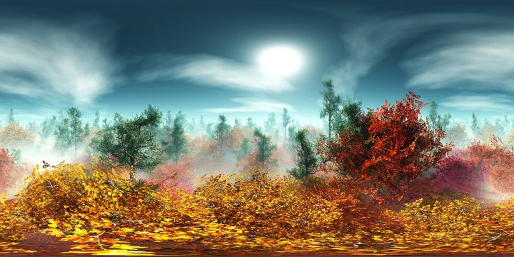 Autumn trees in the fog view from above. HDRI . equidistant projection. Spherical panorama. panorama 360. environment map,