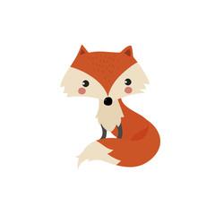 cute isolated fox