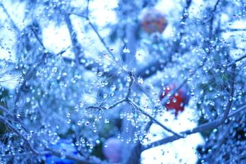 ガラスの木