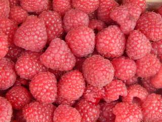 Fresh raspberry closeup