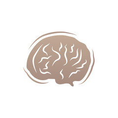 Brain icon flat isolated on white background. vector illustration. Human internal organs.