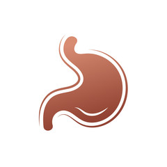 Stomach icon. Human internal organs symbol. Digestive system anatomy. Vector illustration in flat style isolated on white background.