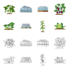 Vector illustration of greenhouse and plant logo. Set of greenhouse and garden stock symbol for web.